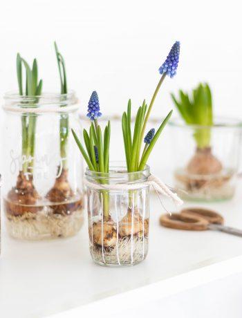 Frühlingsdeko im Glas mit Blumen